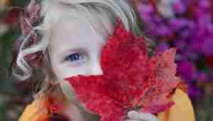 woodland activities for kids.