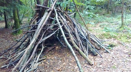 woodland activities for kids.