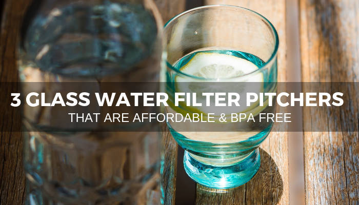 A glass of water & a bottle, with text reading '3 glass water filter pitchers that era affordable & BPA free'. Photo by Tracey Hocking on Unsplash.
