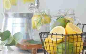 An eco friendly water filter & basket of lemons & limes. Photo copyright: Mariah Hewines via Unsplash.com.